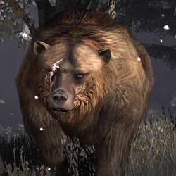 Brumas der legendäre Bär